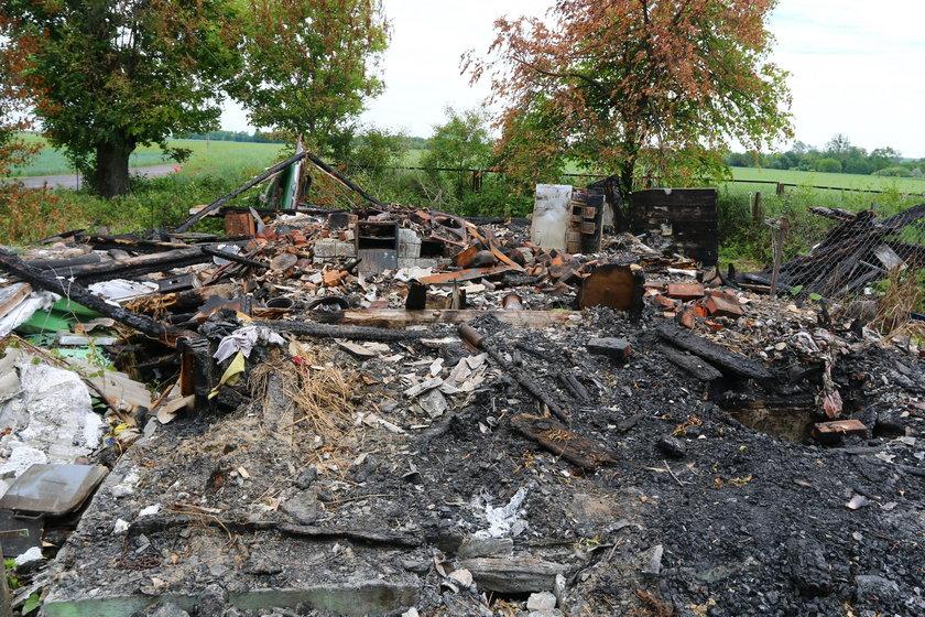 Pies czekał na zgliszczach spalonego domu na swojego pana