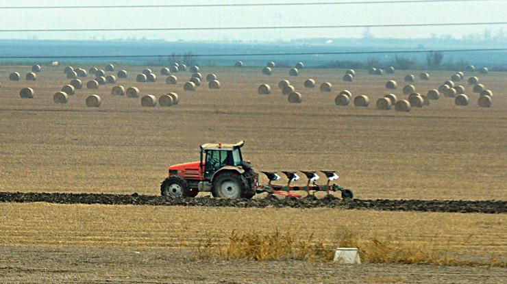 njiva traktor foto Nenad Mihajlovic