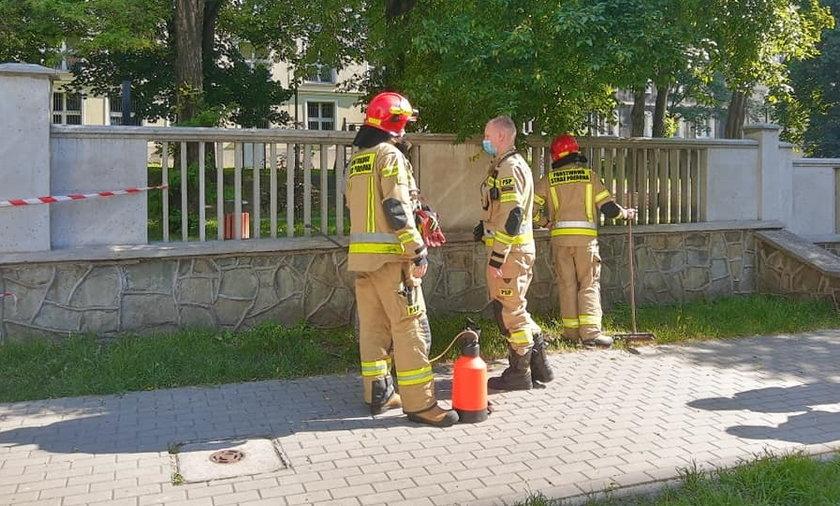 Strażacy opryskują mur okalający plac zabaw przy ul. Dunikowskiego w Katowicach.