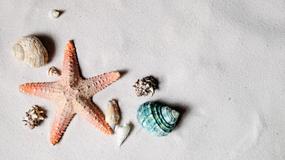 Włochy: nawet kilkanaście tysięcy złotych kary za zabranie piasku i muszelek z plaży