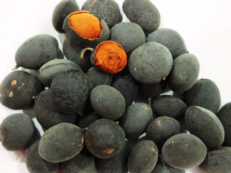 Real names of popular Nigerian fruits- Black Velvet Tamarind