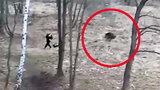 Nieproszony gość zaatakował kobietę i jej pupila w Krakowie