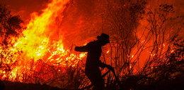 W Indonezji szaleją pożary lasów. Dymy docierają do Malezji