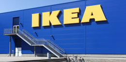 Kupiłeś te talerze lub kubki w Ikei? Musisz je zwrócić!