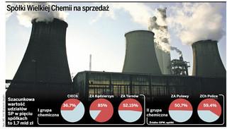 Sektor chemiczny: w ciągu najbliższych miesięcy zapadną decyzje o przyszłości pięciu spółek