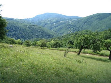 Homoljske planine foto S. Mirkovic