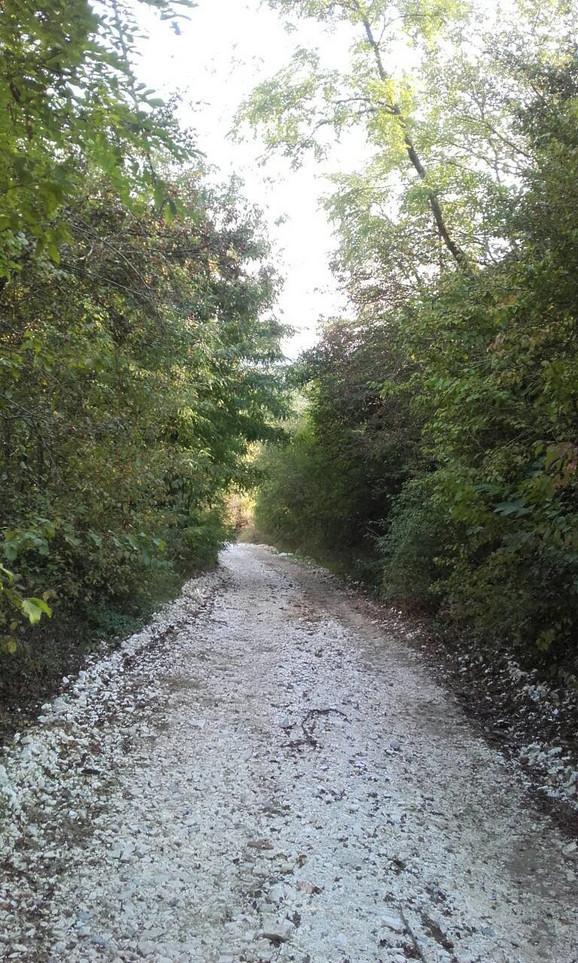 Imanje je okruženo šumom, tu su i potok, majdan...