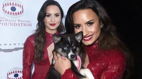 Demi Lovato eksponuje dekolt na gali. Przesadziła?