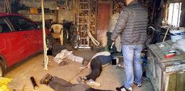 Policjanci rozbili dziuplę