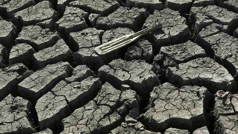 USA: walcząca z suszą Kalifornia wprowadza restrykcje w zużyciu wody