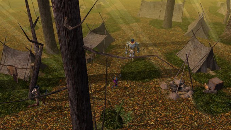 Galeria Neverwinter Nights