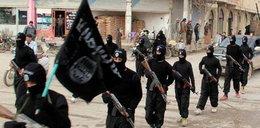 Al-Kaida zaatakuje USA?! Wysadzą...