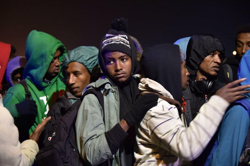 """Ruszyła likwidacja """"dżungli"""" w Calais"""