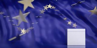 Wybory do europarlamentu: Jak głosowali Polacy na Białorusi?