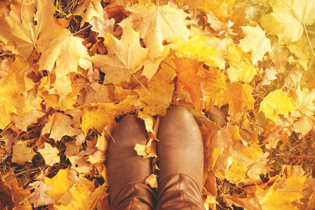 Modna jesień