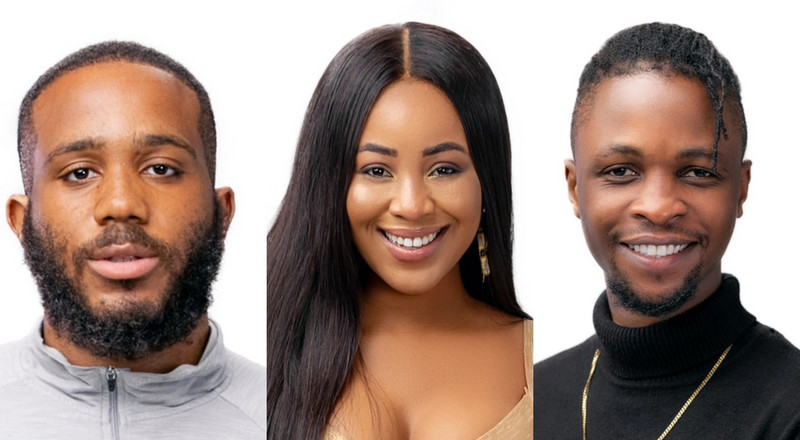 BBNaija 2020: Erica admits she's mentally attracted to Laycon but physically into Kiddwaya