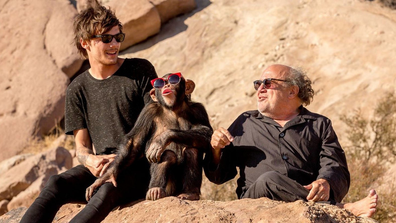 Danny Devito na planie klipu One Direction