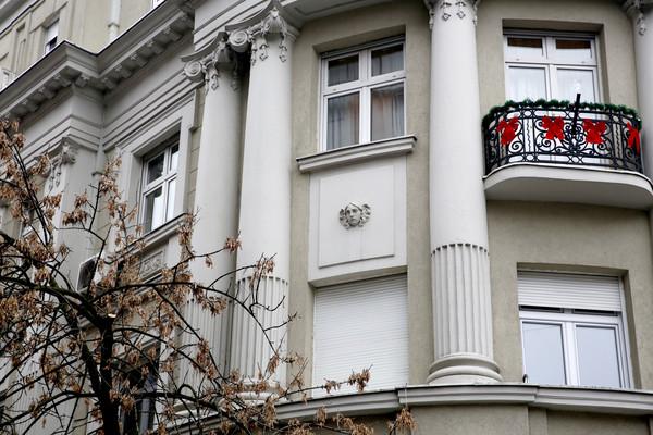 Nekadašnji dom Svetlane Cece Ražnatović 6