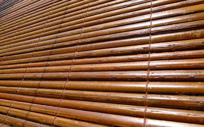 Rolety Bambusowe Czy Warto Mieć Je W Swoim Domu