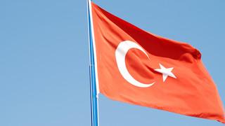 Turcja: Na południu kraju szaleje już ponad 100 pożarów. Płoną zwierzęta