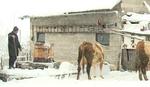 Ovakve nestašice NE PAMTE: Selo na Manjači danima BEZ VODE, meštani strahuju za stoku