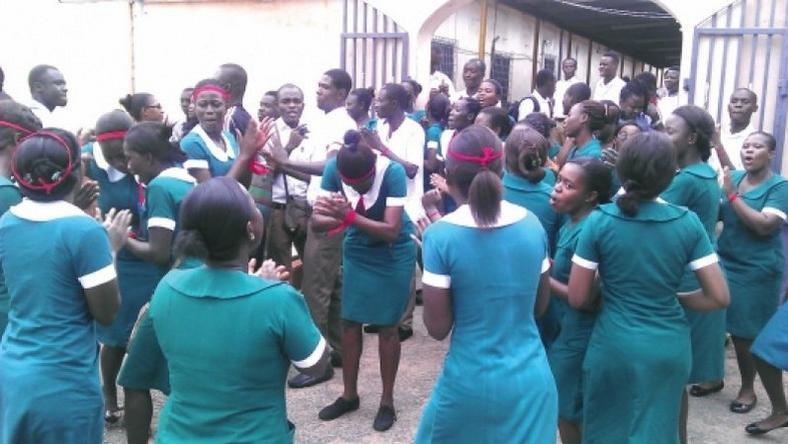 Unemployed graduate nurses