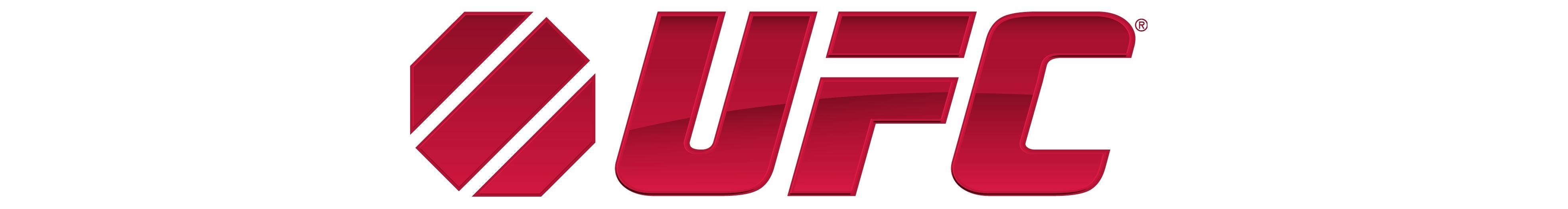 UFC - baner