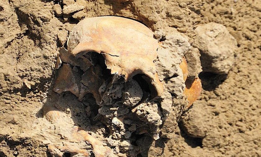 Makabryczne znalezisko w Rybniku