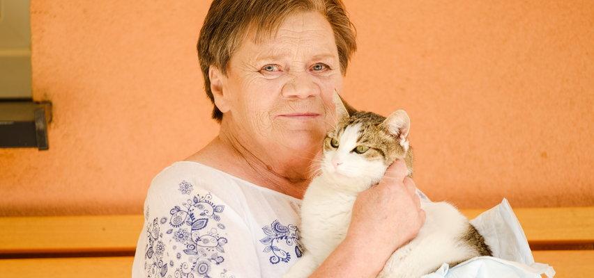 Zwyrodnialec postrzelił kotka pani Teresy. Opiekunka cierpi i jej pupil