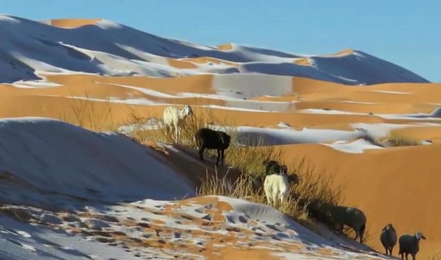 Alžir, sneg