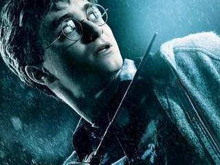 harry potter rekord