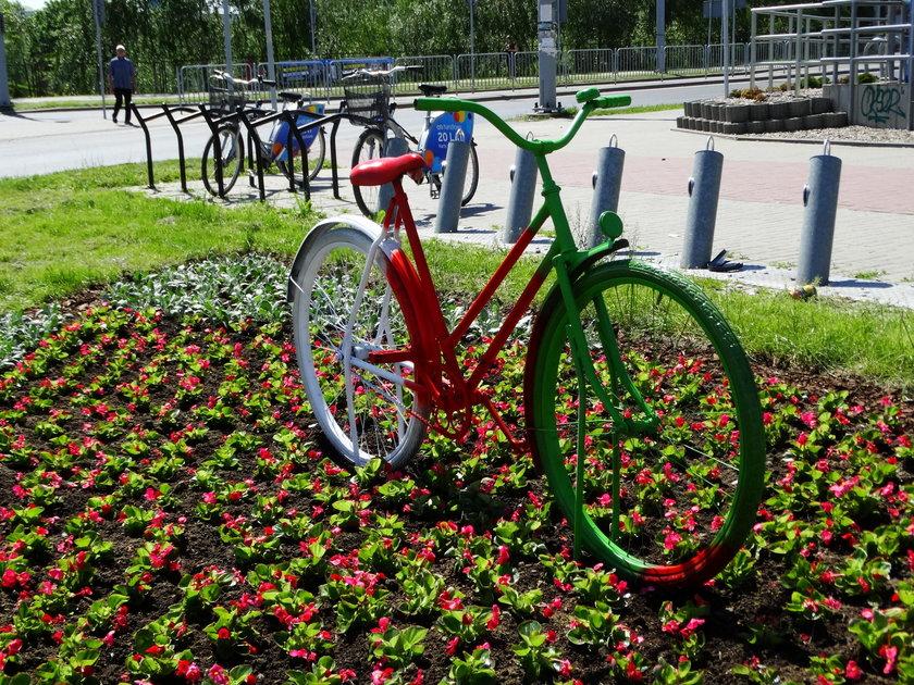 Rowery w miejskich barwach