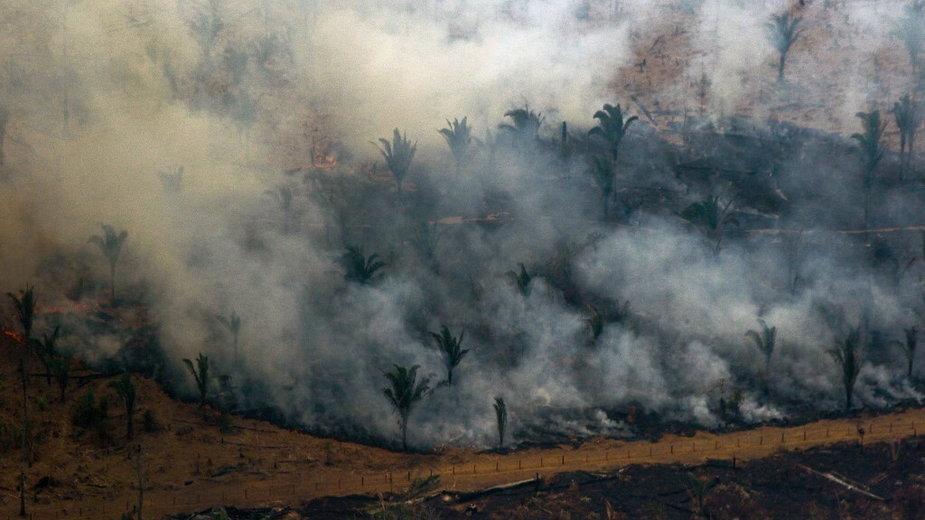 Pożar w Amazonii (ilustracyjne)