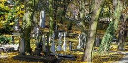 """""""Rzeczpospolita"""": zmiany w ustawie o cmentarzach i pochówku zmarłych"""