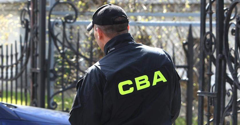 CBA i ABW w ubiegłym roku prowadziły śledztwa w sprawach gospodarczych i podatkowych, w których straty skarbu państwa oszacowano na blisko 7 mld zł