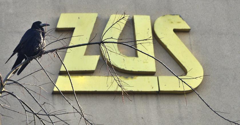Pracownicy ZUS-u są wściekli, bo nie ma pieniędzy na podwyżki