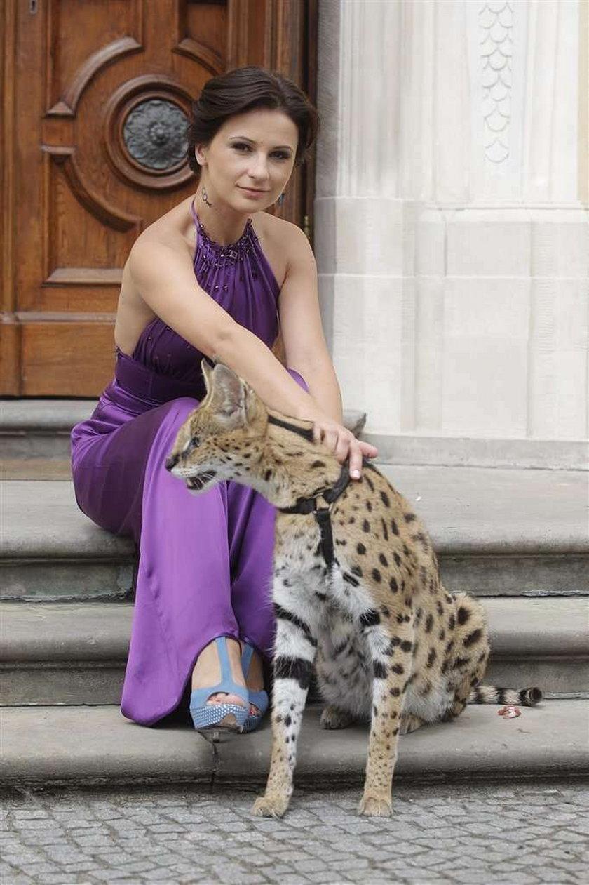 Wiśniewska z drapieżnymi kotami. Foto