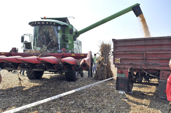 U celo svetu i dalje traju sporovi o štetnosti i korisnosti GMOu poljoprivredi
