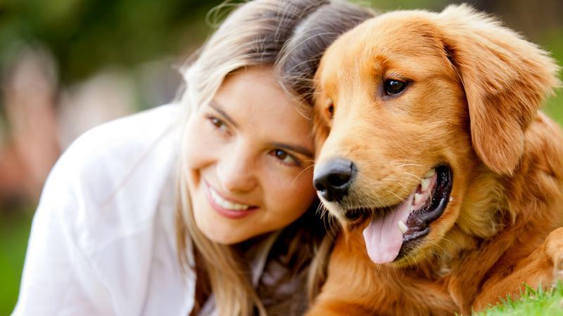 Naukowcy: zapach znajomego człowieka jest dla psa niczym nagroda
