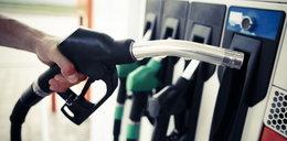 """Polskę czeka brak paliwa jak w Wielkiej Brytanii? Czy """"jedynie"""" podwyżka do 6 zł za litr?"""