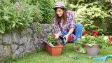 Porządki w ogrodzie - te narzędzia ułatwią ci pracę!