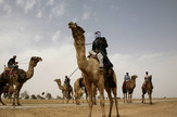 beduini izrael