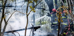 Tragiczny pożar w Gdyni. Nie żyją trzy osoby