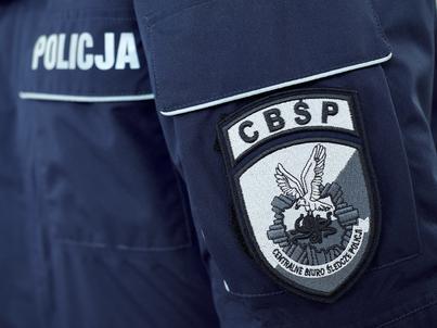 W 2017 r. swoim zainteresowaniem CBŚP objęło 858 zorganizowanych grup przestępczych