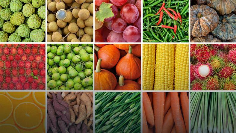 Pestycydy Zatruwają Naszą żywność Zdrowie