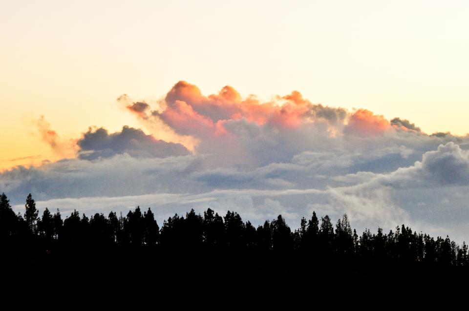 Teneryfa jest wyspą pochodzenia wulkanicznego, z obecnymi wszędzie śladami aktywności wulkanicznej.