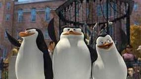 Pingwiny w telewizji
