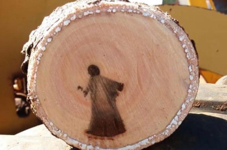 Isus na stablu, skrinšot