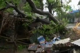 Ciklon Indija