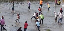 Festiwal rzucania kamieni. Są setki rannych